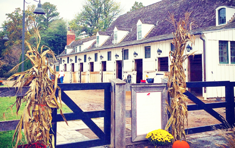 meadowbrook-stables-in-fall