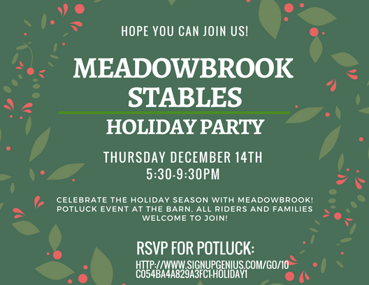 Meadowbrook Holiday Party!